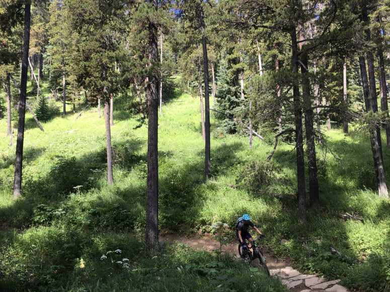 West Bragg Creek Bike Trails