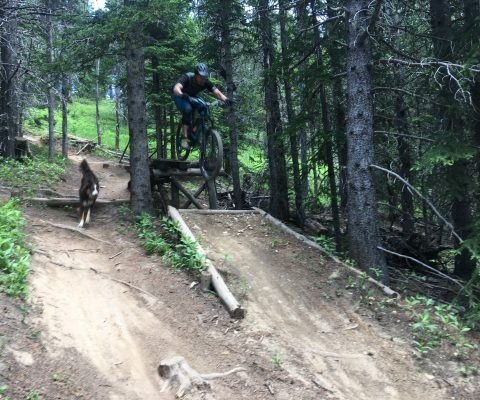 moose mountain bike trails