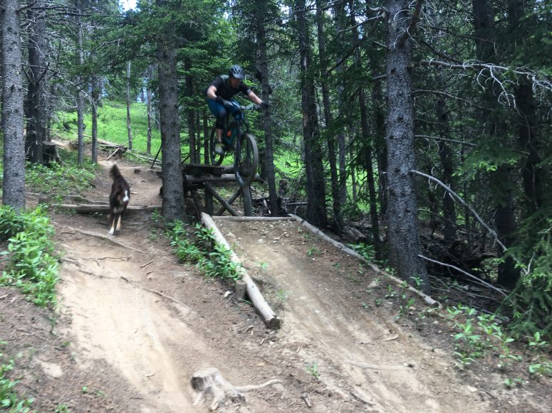 Moose Mountain Bike Trails