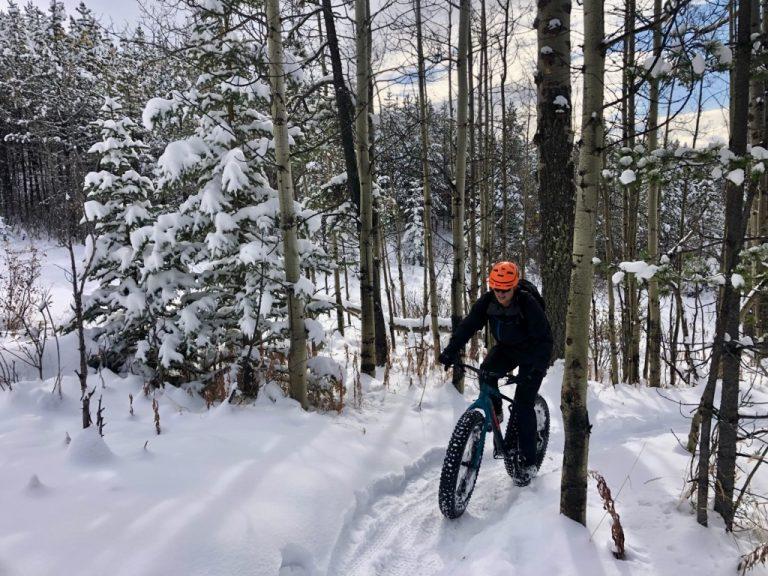 trek fat bike
