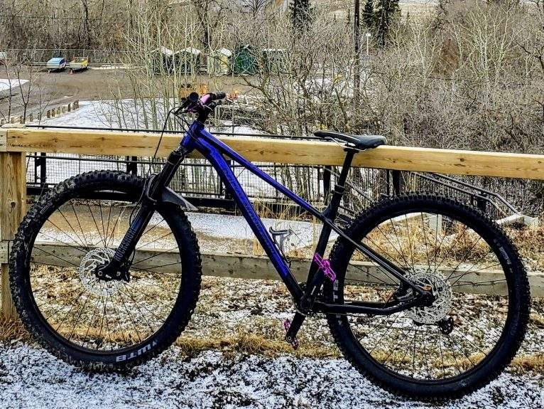 Shannon's Rocky Mountain Growler 50 '21 Custom Build