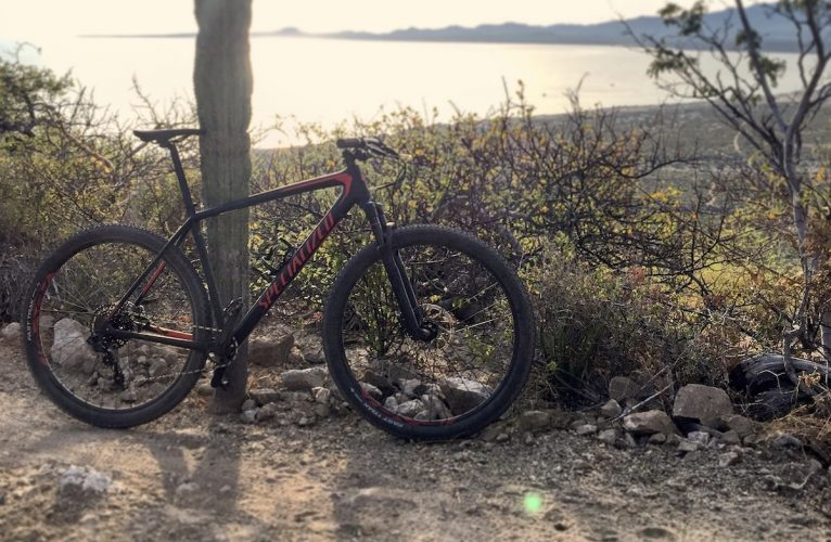 Specialized Epic Hardtail Comp: Who's it For?
